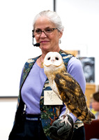 Barn Owl with Marcia